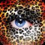 Create Your Safari Park 3D