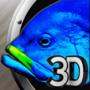 Create Your Own Aquarium 3D